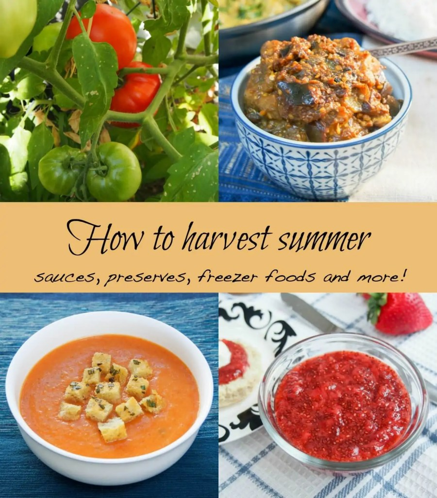 how to harvest summer - SundaySupper preview