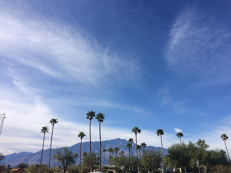 Passer une journée à Palm SpringsPasser une journée à Palm Springs