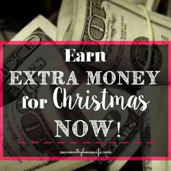 Earn Extra Money For Christmas NOW