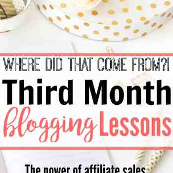 She made FOUR TIMES as much in her third month blogging!! She's got some amazing tips that are really helpful for a new blogger to get started making an income from blogging. I can't wait to try these out!
