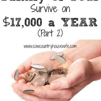 How Does a Family of Four Survive on $17,000 a YEAR (Part 2) www.cowcountryhousewife.com