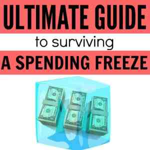 Ultimate Guide to Surviving a Spending Freeze