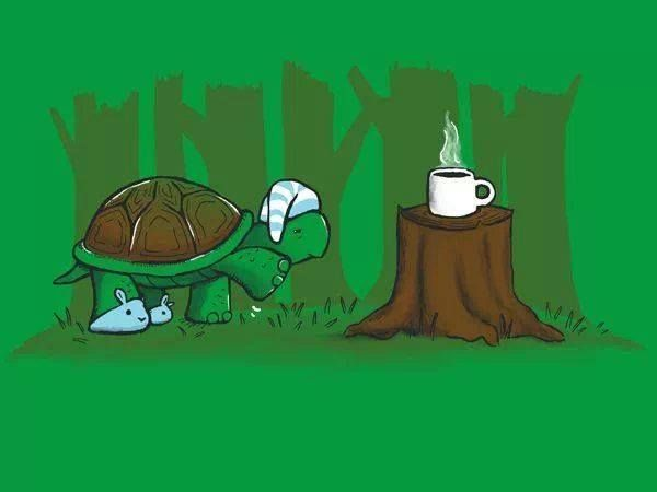 fffa3330130545f3eec1b8970aaf7727-morning-coffee-funny-funny-turtle-2 But First Coffee