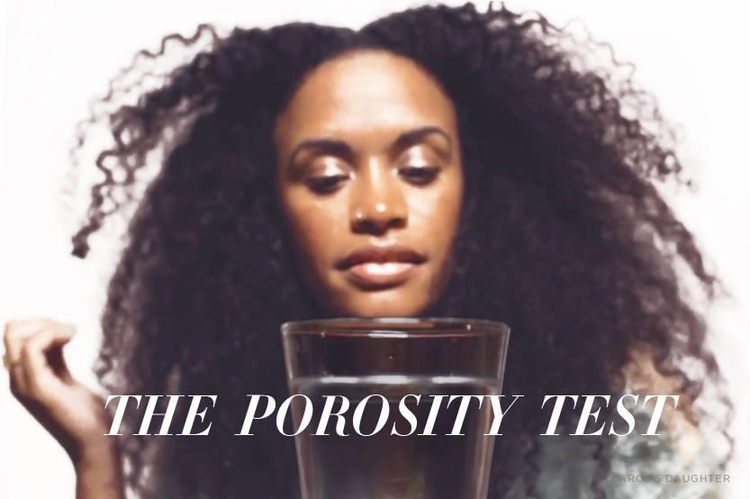 types of hair porosity