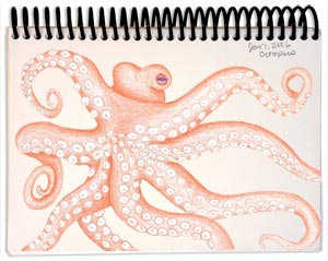 Octopus 1.4.16