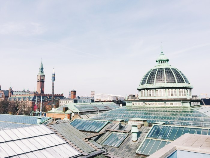 View from the roof of the Glypotek
