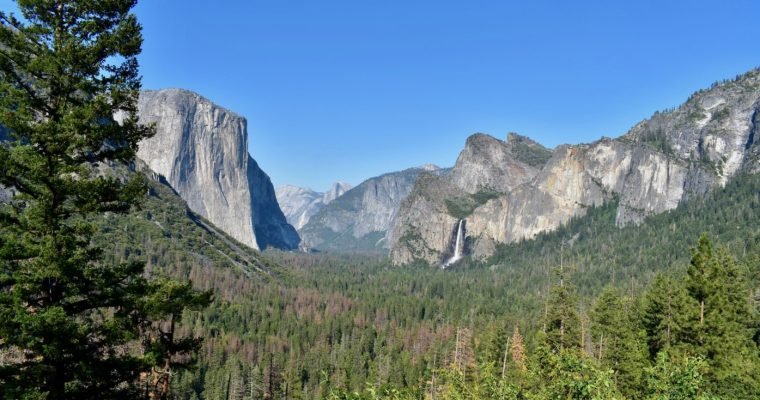 Top five family activities in Yosemite