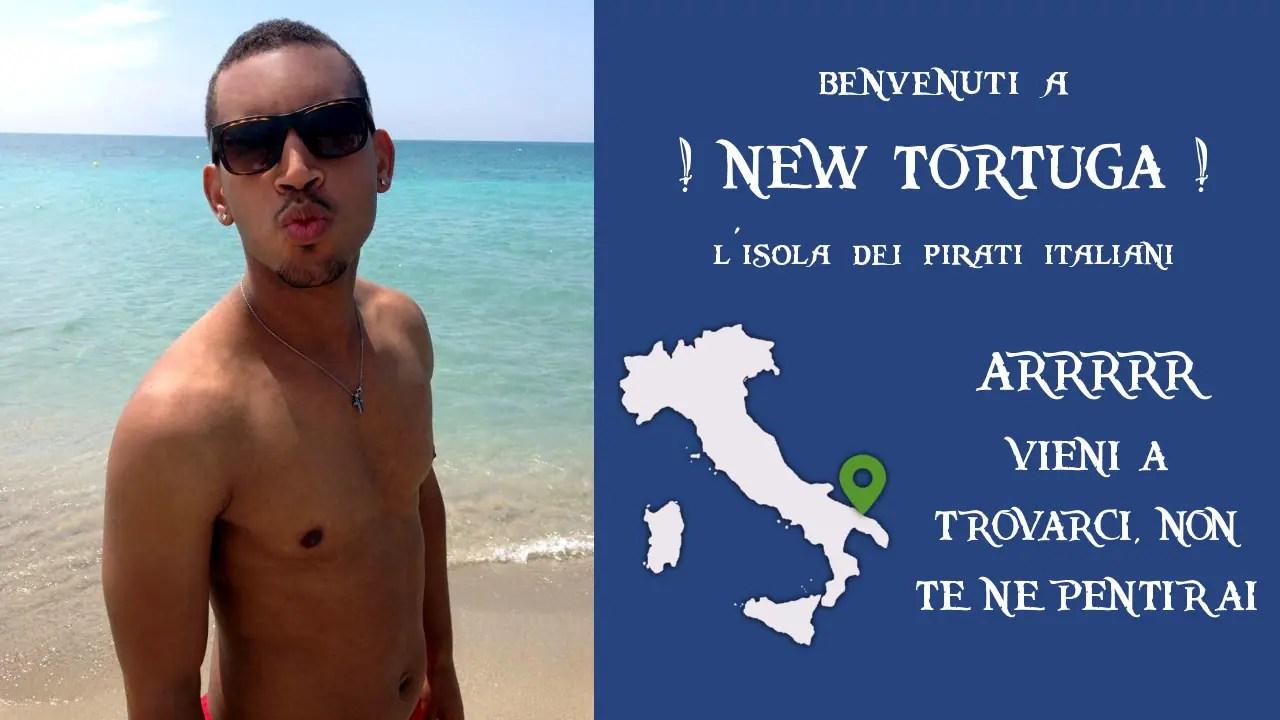 New Tortuga IT