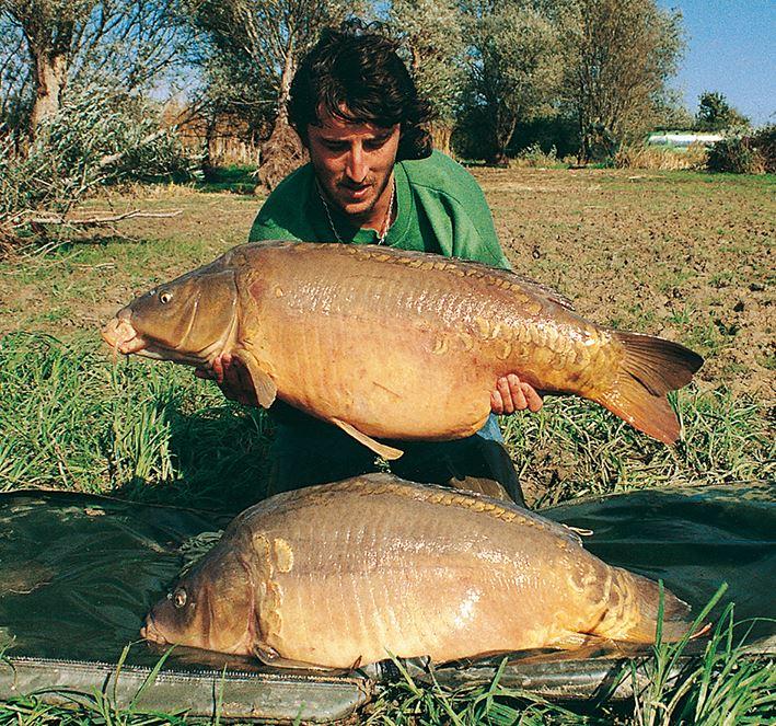 Rod Hutchinson la force 20 mm 1 kg durée de vie Boilies peche carpe