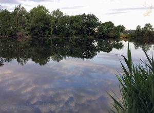 Yonne à Chicheri