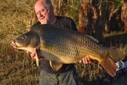 Carpe du lac de Montbel (24 kg)