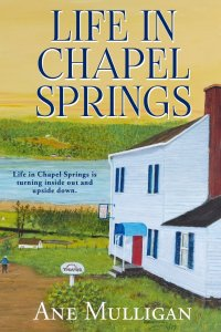 Life In Chapel Springs on The Book Club Network featured on CarpeDiem.fyi