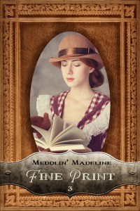 Fine Print, a new Meddlin' Madeline mystery touring with Celebrate Lit and featured on CarpeDiem.fyi!
