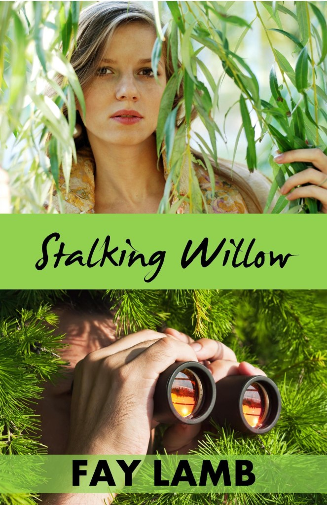 Stalking Willow on tour with Celebrate Lit and featured on CarpeDiem.fyi