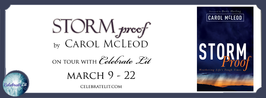 Storm Proof on tour with Celebrate Lit and featured on CarpeDiem.fyi