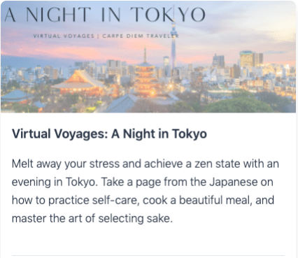Virtual Voyages: A Night in Tokyo
