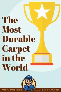 Most Durable Carpet in the World