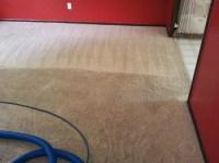 Carpet Deodorizing, Odor Removal, Clean Smelling Carpets ...