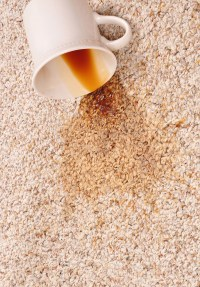 coffee stain in carpet - Home The Honoroak