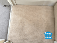 Blood stains carpet cleaning in Westminster, Central London