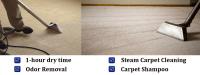 Carpet Cleaning Miami | (786) 363-3900