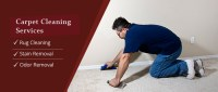 Carpet Cleaning South Pasadena, CA | 626-263-9285 | Best ...
