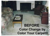 Does Dying Your Carpet Work - Home The Honoroak