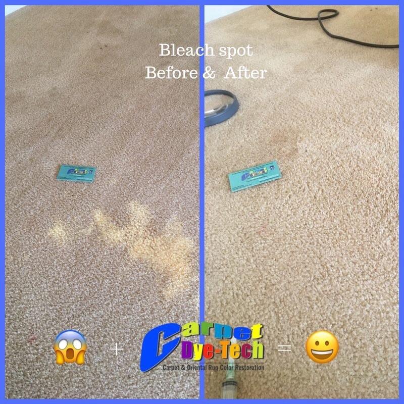 leather sofa repair charleston sc dog wear deutschland bleach damaged stain recolor carpet - dye ...