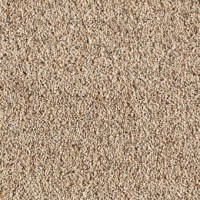 Serene Selection | Smartstrand Silk | Mohawk Carpet | Save ...
