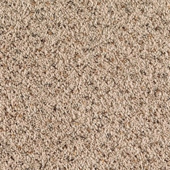 Desert Isle  Mohawk Carpet  Save 3050
