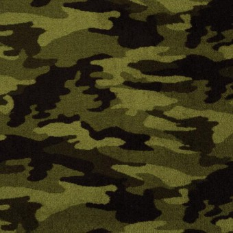 Camouflage  Philadelphia Carpet  Shaw Floors  Save 30