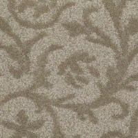 Simply the Best | Shaw Carpet & Queen | Save 30-50%
