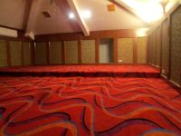 Cut Pile Carpet for Home Theater and Entertainment Room ...