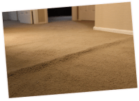 Carpet Repair & Cleaning Chicago