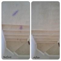 Carpet repair for permanent stains | Carpet Repair Houston ...