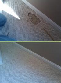 Iron Burn Repair | Carpet Repair Houston | Carpet ...