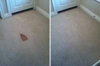 Iron burn repair houston | Carpet Repair Houston | Carpet ...