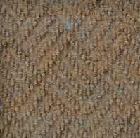 Dreamweaver by Shaw - Indoor - Outdoor - Carpet - Durable