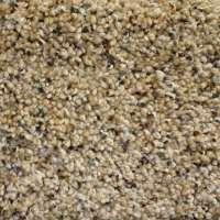 olympia carpets  Floor Matttroy