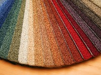 Carpet Flooring Experts in Chicago  Carpets in the Park