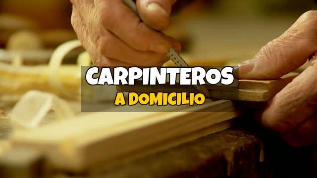 carpintero domicilio bogota