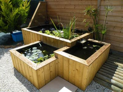 Quelques exemples de bassins dagrment  Pisciculture CARPIO