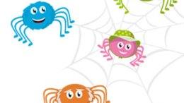 Visuel du programme d'animation Araignée