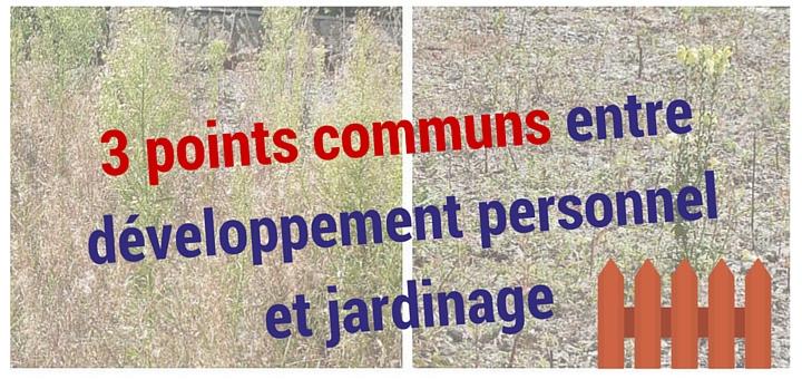 Découvrez le parallèle entre développement personnel et jardinage