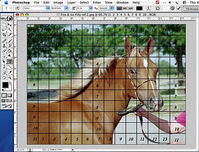 Putting a Drawing Grid on a Digital Photo - Step 6