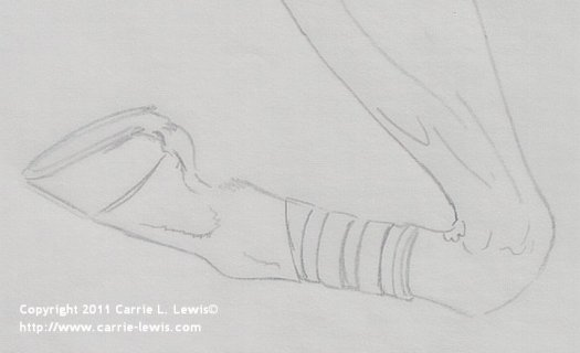 How to Draw Horse Legs and Feet - Detail of Final Drawing