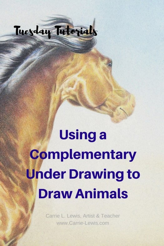 Using a Complementary Under Drawing to Draw Animals