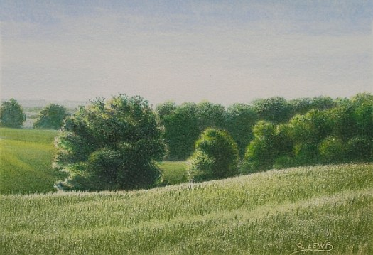 draw realistic landscape greens