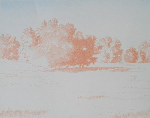 Landscape Complementary Under Drawing 1