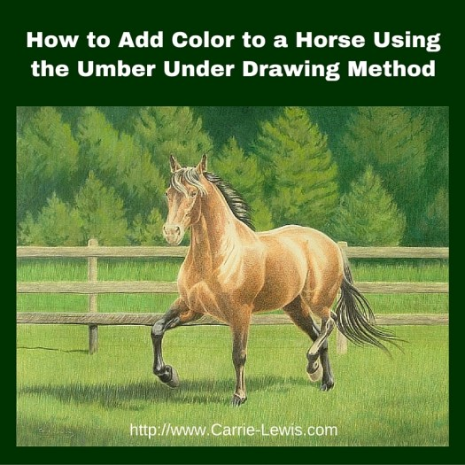 How to Add Color to a Horse Using the Umber Under Drawing Method